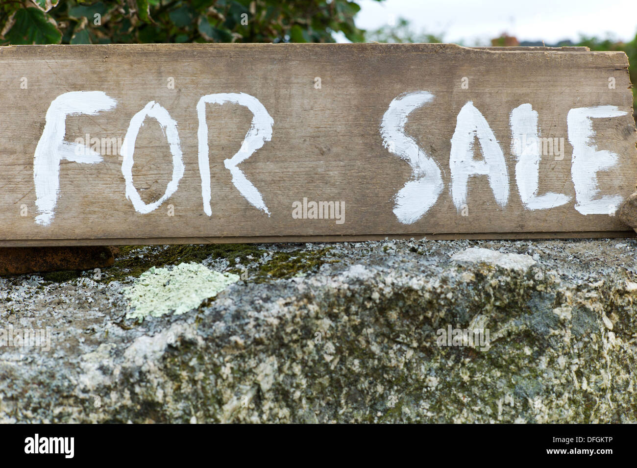 Wooden painted for sale sign on granite wall in Cornwall Credit: David Levenson/Alamy - Stock Image