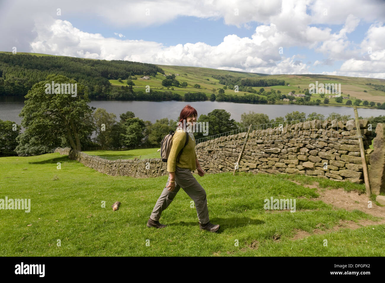 The TV Presenter Janet Street-Porter walking near her home in North Yorkshire - Stock Image