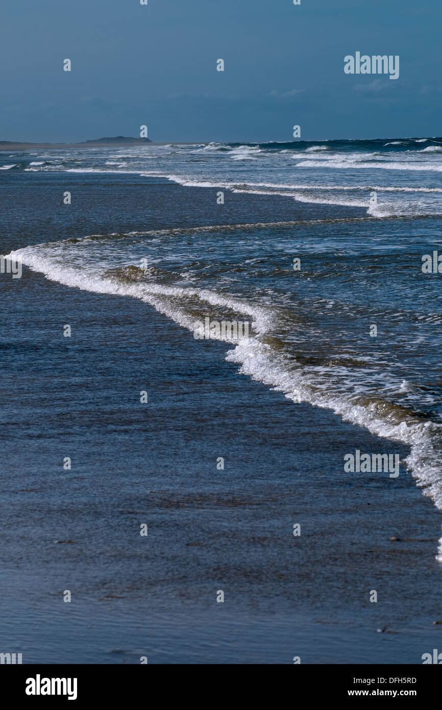 Tide line on a deserted beach, - Stock Image