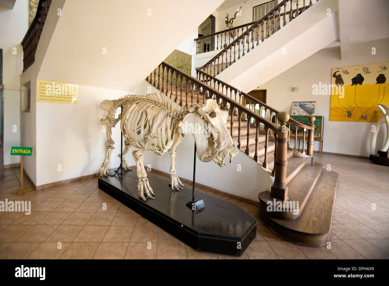 Entry to the Museum of Natural Sciences of Mozambique - Stock Image