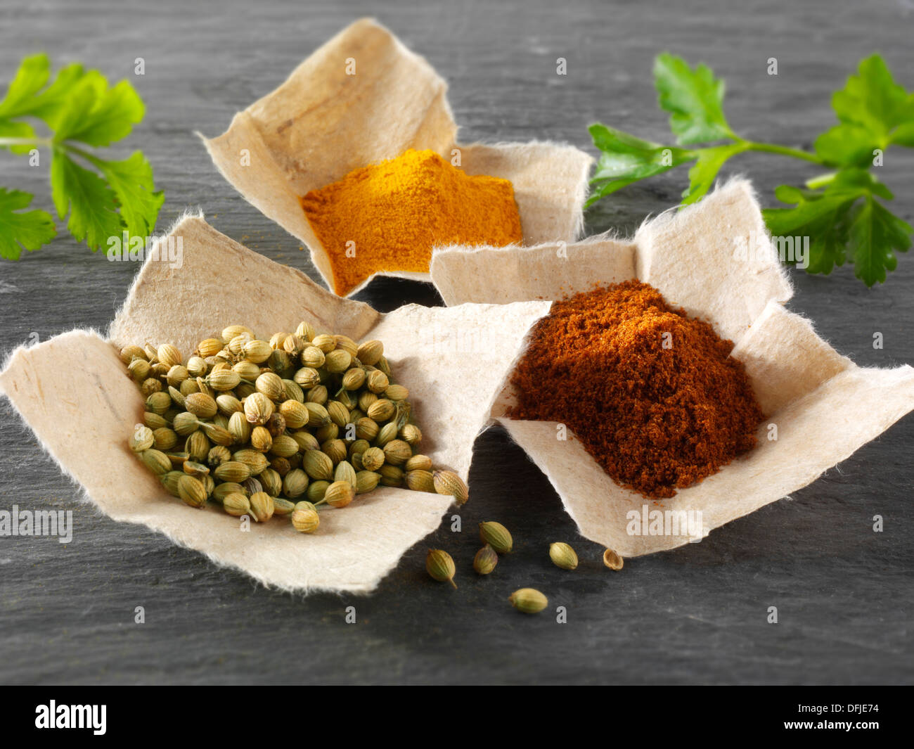 Coriander seeds, ground chilli powder & ground turmeric Indian spices - Stock Image