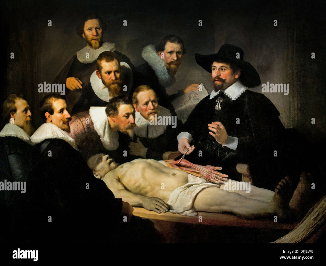 Anatomy Lesson Stock Photos Anatomy Lesson Stock Images Alamy