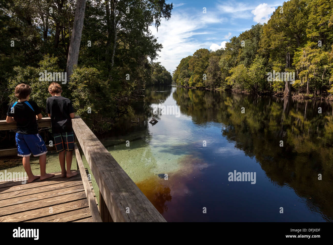 Two young boys on dock boardwalk looking at crystal clear spring water entering the Santa Fe river blackened by root tannins. - Stock Image