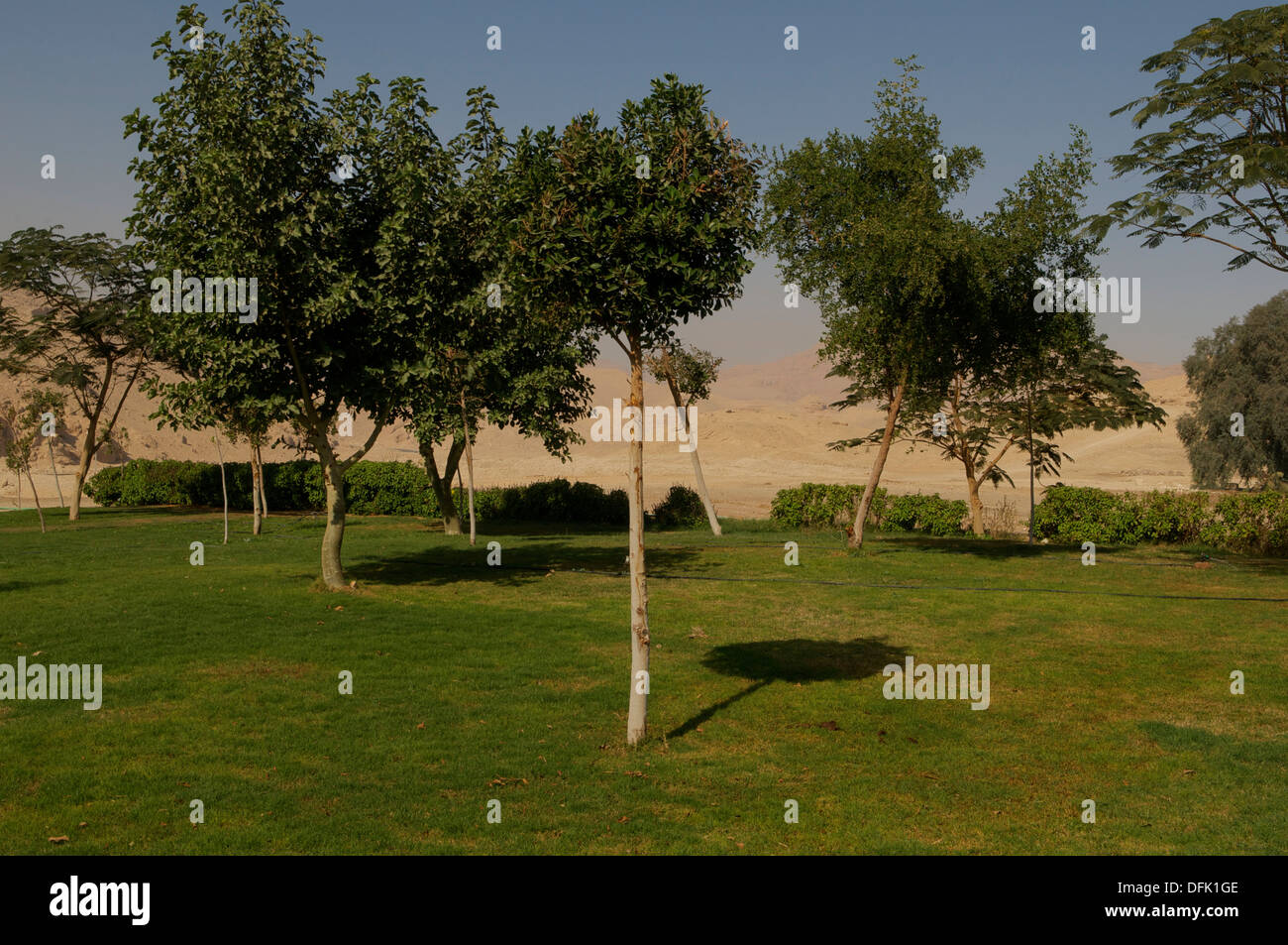 View from the garden lawn of Howard Carter's dig house to the desert near the Valley of the Kings at Luxor, Egypt. - Stock Image