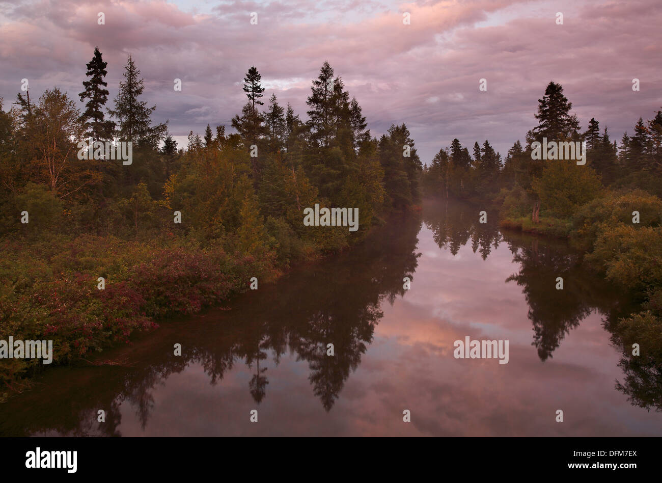 Trees and clouds reflected in a calm river, Gaspé Peninsula, Québec, Canada - Stock Image