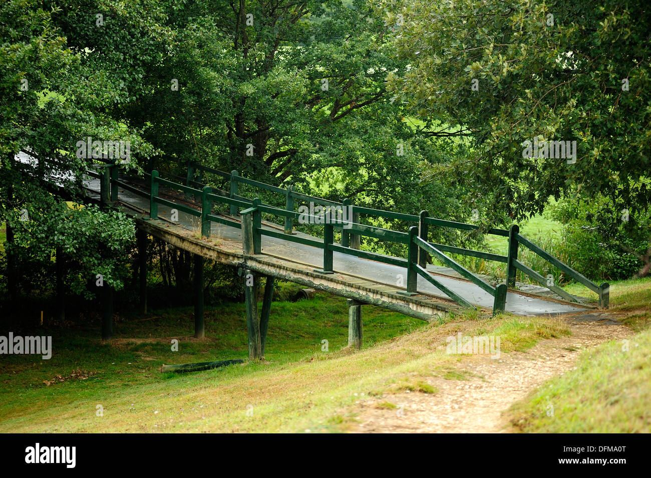 Wooden bridge in the forest at the end of a road - Stock Image