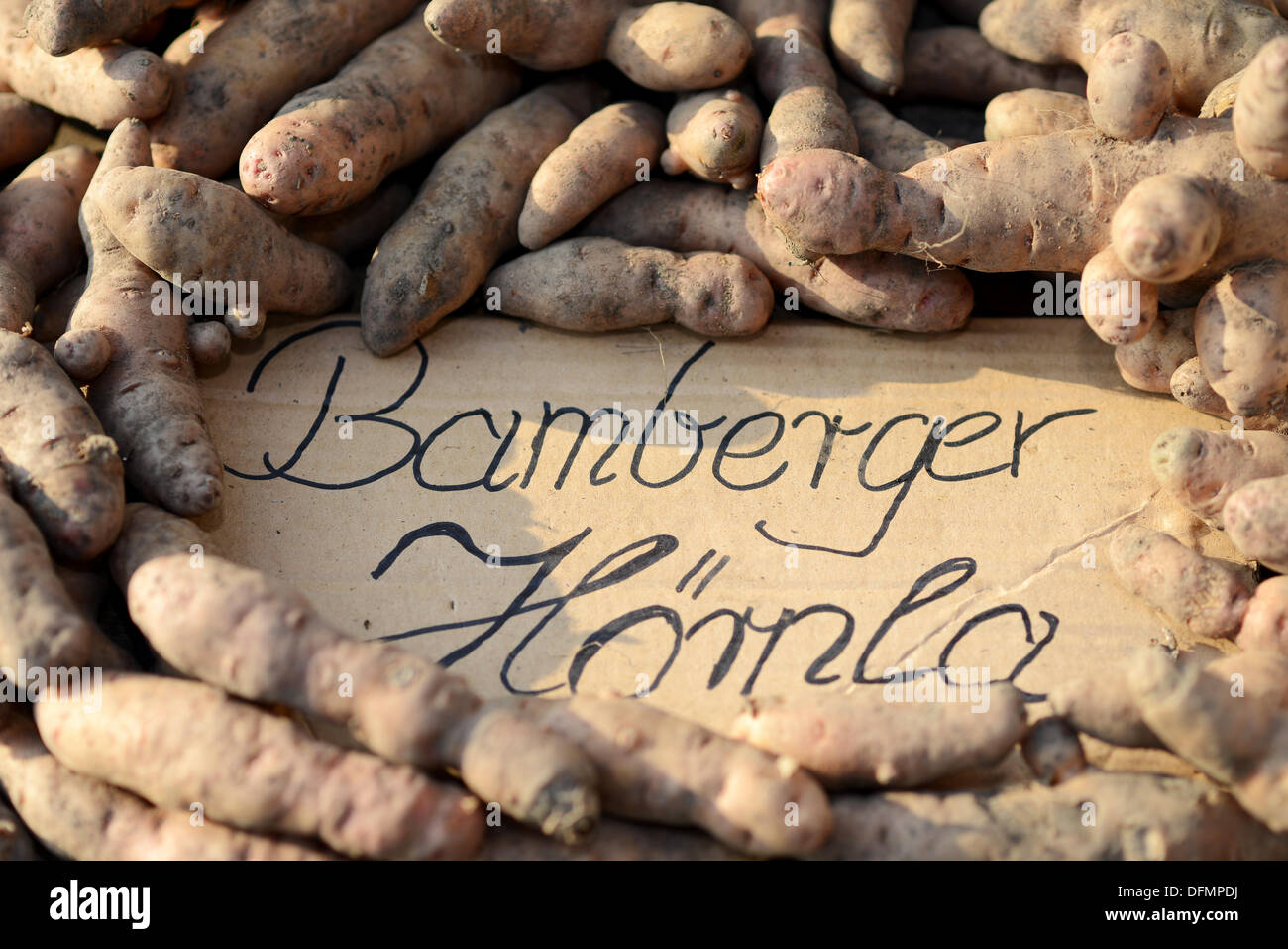 Bamberg, Germany. 07th Oct, 2013. Potatos of the 'Bamberg potato' variety are on sale in Bamberg, Germany, 07 October 2013. The old Franconian potato variety has been admitted to the European registewr of regional specialities. Photo: DAVID EBENER/dpa/Alamy Live News - Stock Image