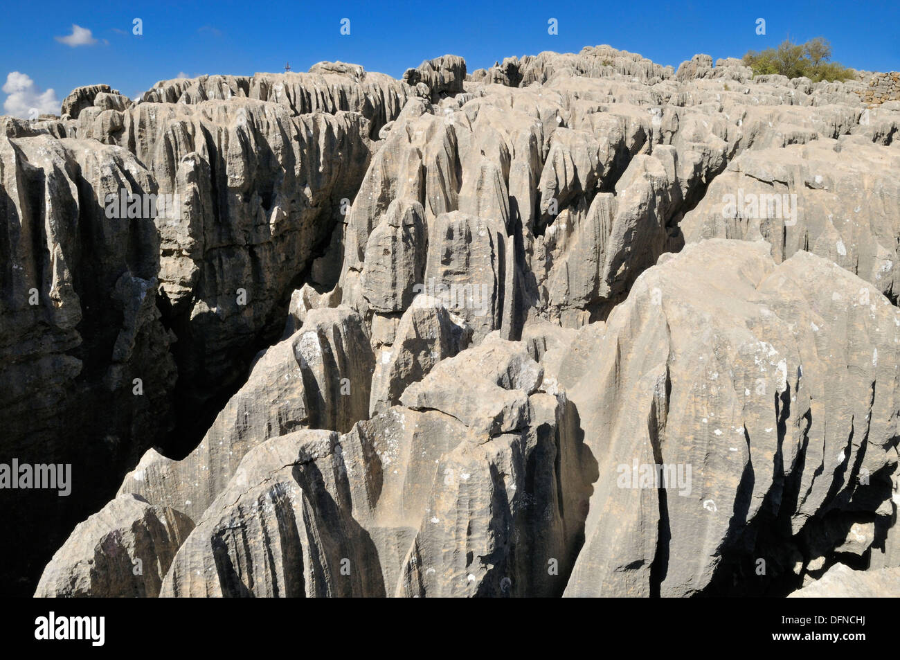 geology, eroded limestone, karst formation at Qalaat Faqra, Lebanon, Middle East, West Asia - Stock Image