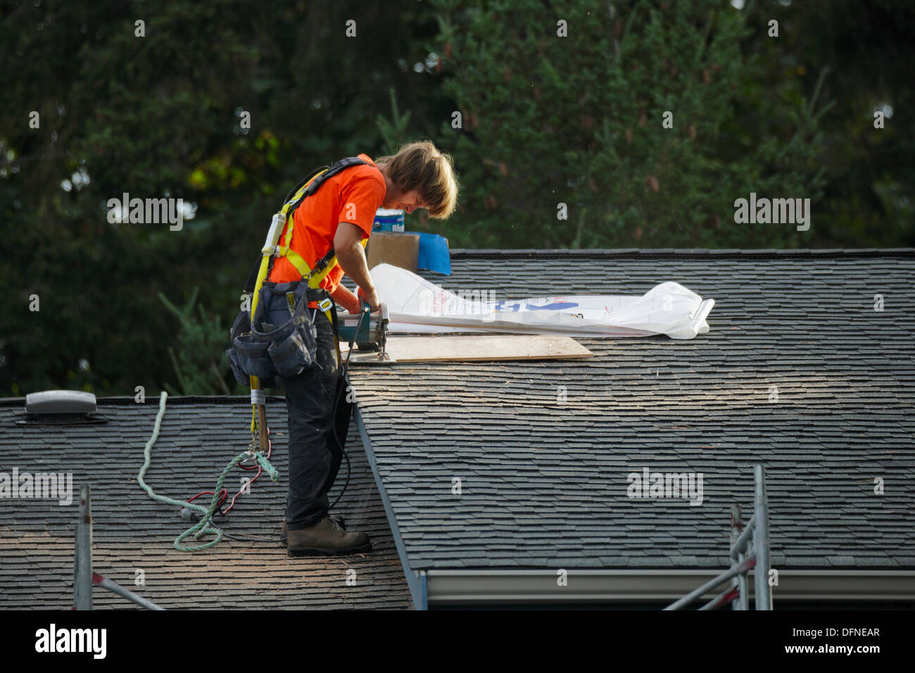 Roofer working on condominium roof while tethered-Victoria, British Columbia, Canada. - Stock Image