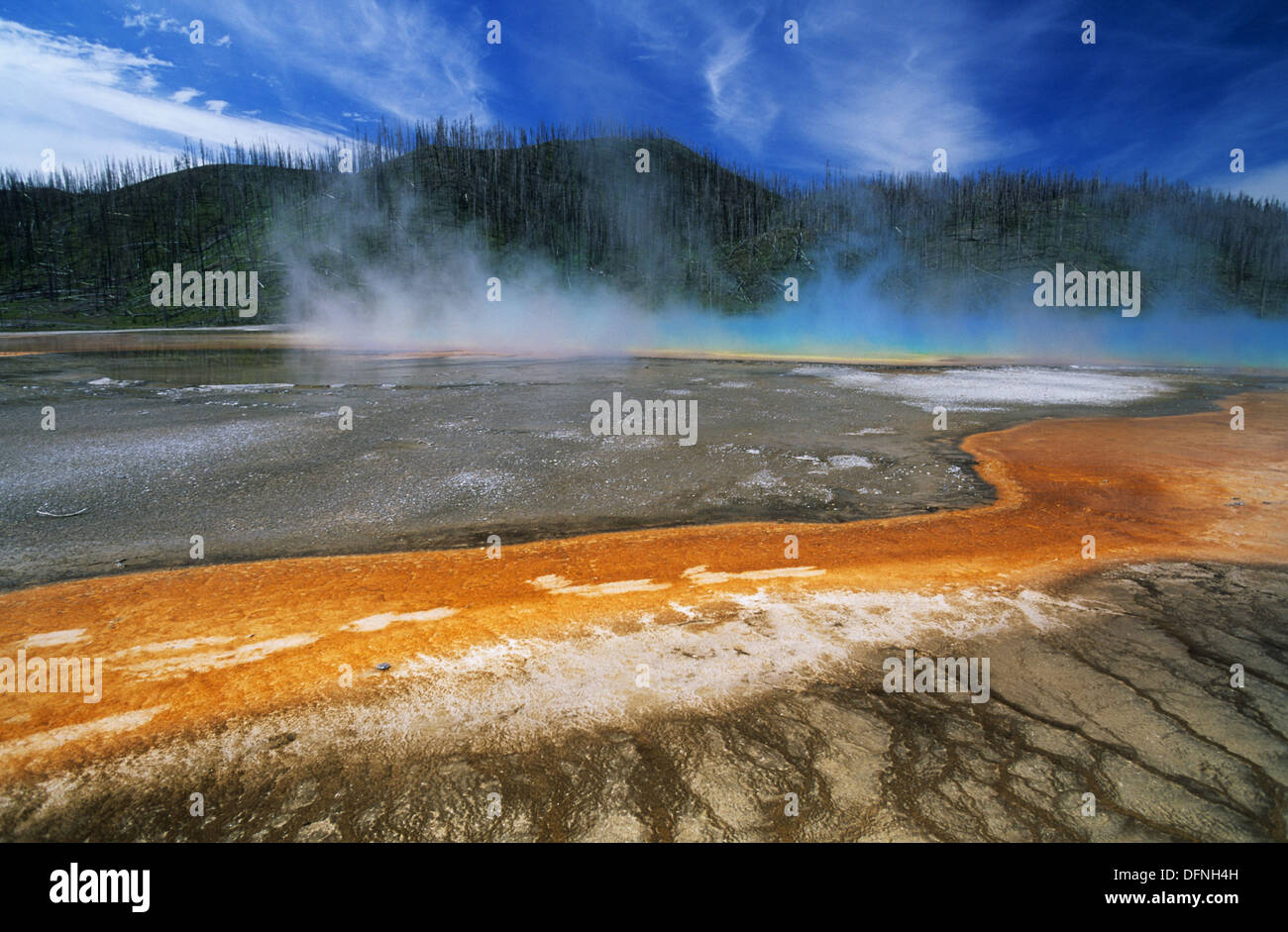 Elk265-1603 Wyoming, Yellowstone National Park, Midway Basin, Grand Prismatic Spring - Stock Image