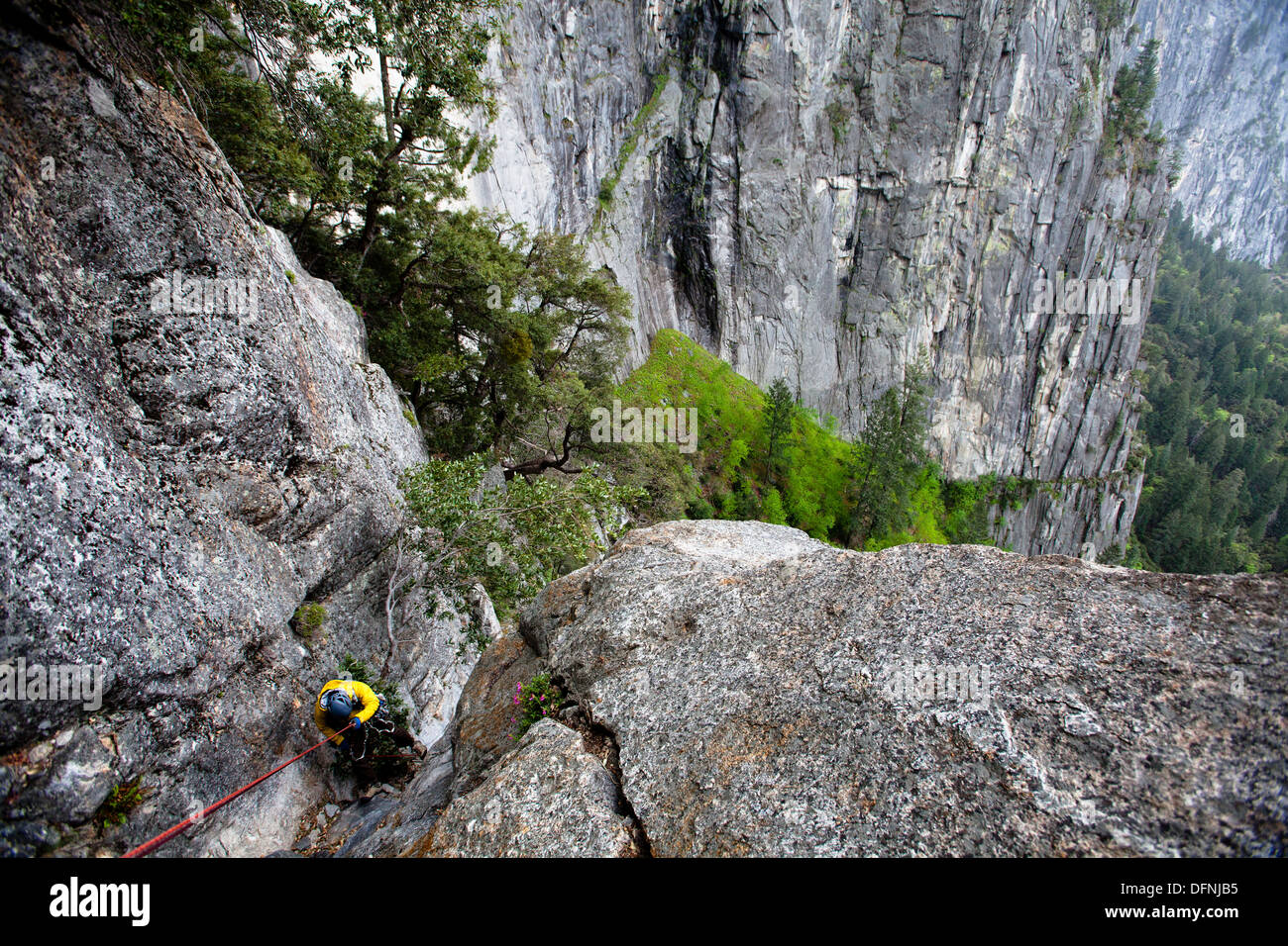 A male climber rappels off the Leaning Tower in Yosemite National Park, California. - Stock Image