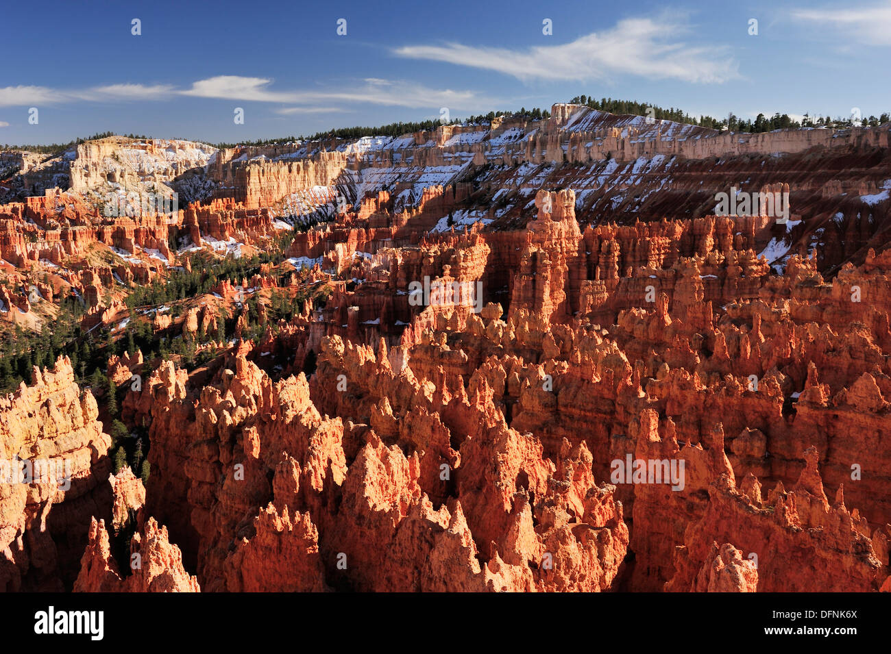 Rock spires in Bryce Canyon, Bryce Canyon National Park, Utah, Southwest, USA, America Stock Photo