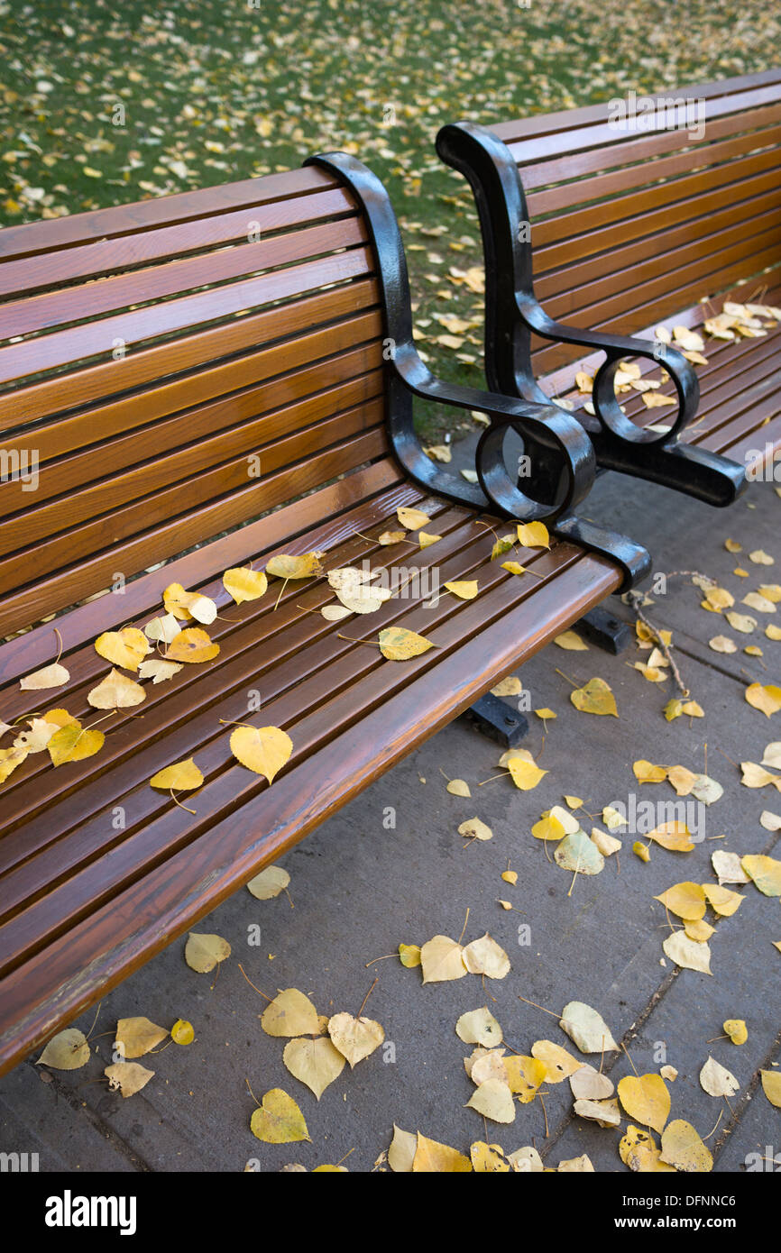 Autumn leaves on bench in city park - Stock Image