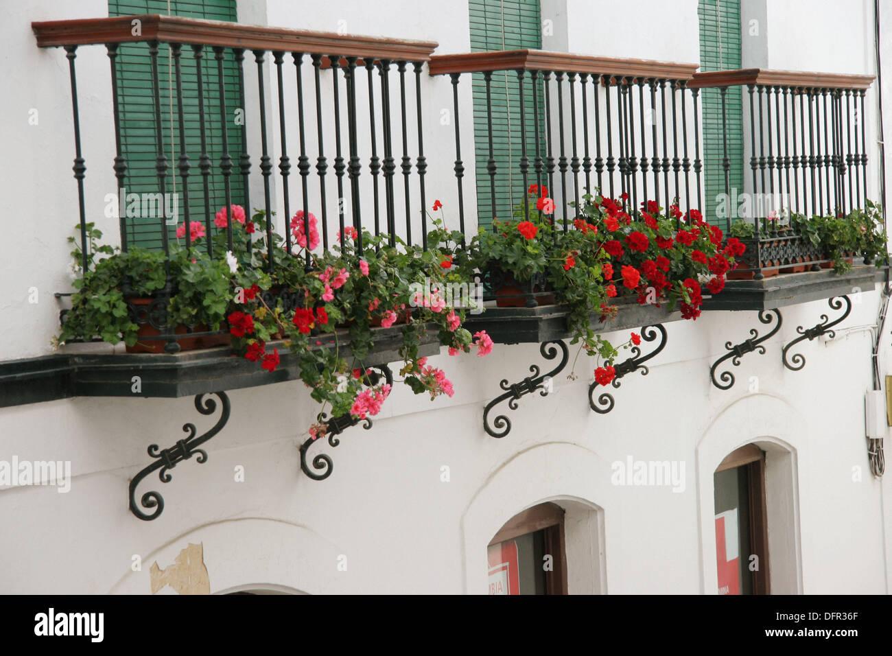 Balcones Con Maceteros Con Flores Vejer De La Frontera Cadiz - Fotos-de-balcones-con-flores