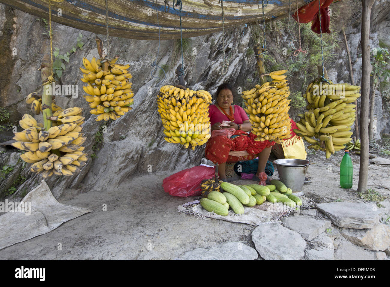 A lady street vendor selling fruits and vegetables, Nepal. - Stock Image