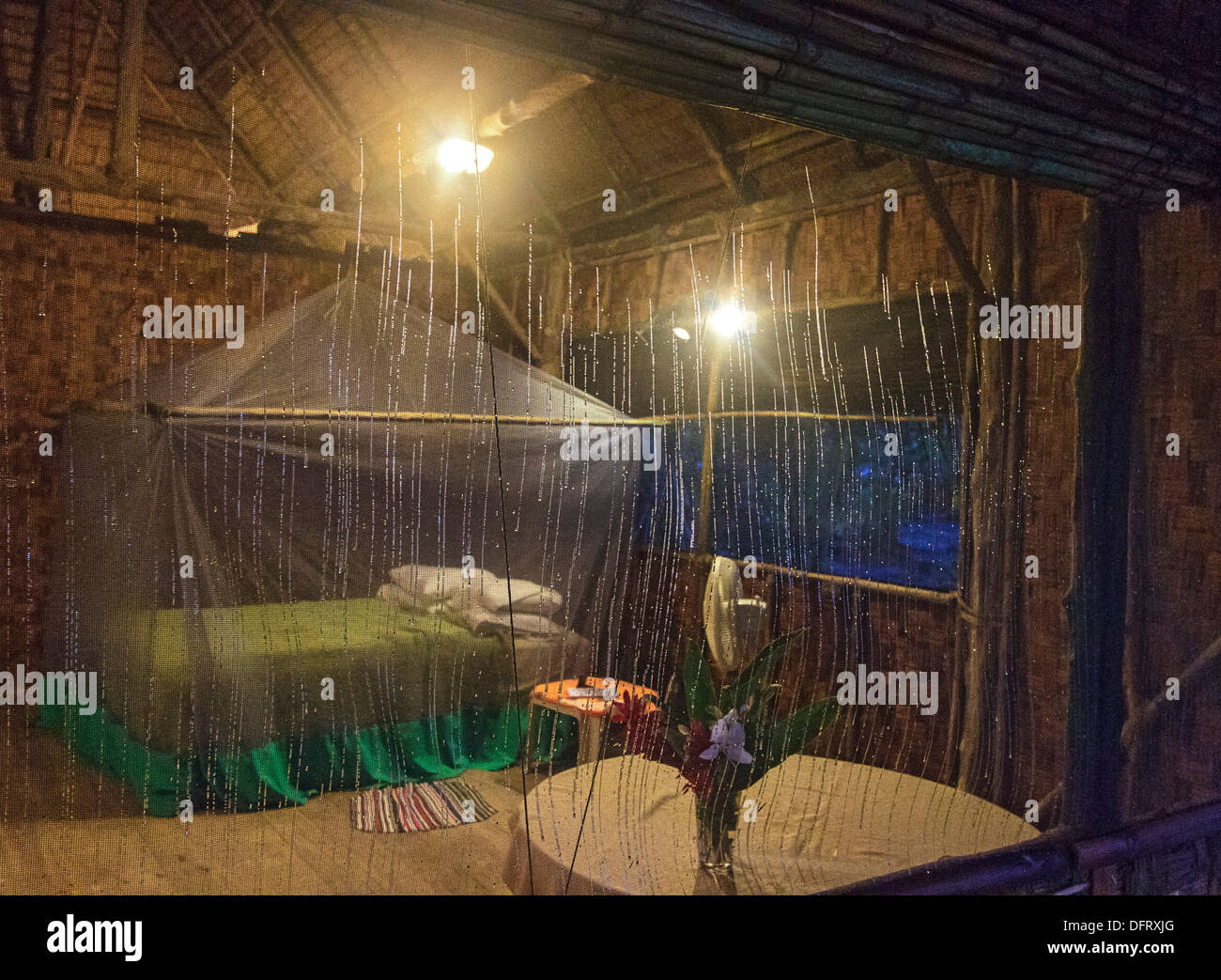 Runners of condensation sparkle in dawn light on the screen of visitor's cabin at Kosrae Village Eco Resort, Kosrae, Micronesia - Stock Image