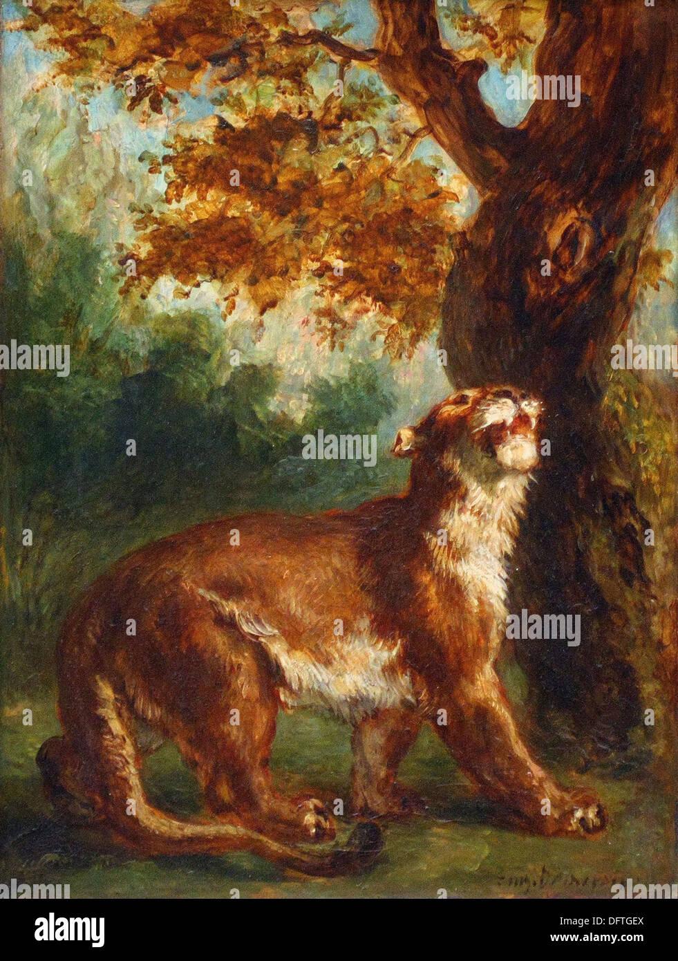 Eugène DELACROIX - Le puma - 1859 - Orsay Museum - Paris - Stock Image