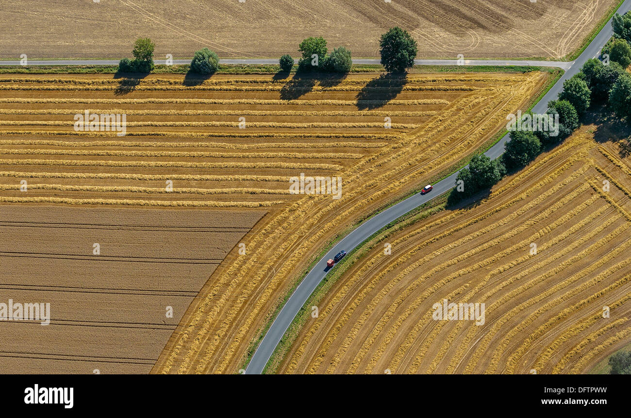 Harvested fields, crossroads, country roads, Eineckerholsen, Welver, North Rhine-Westphalia, Germany - Stock Image