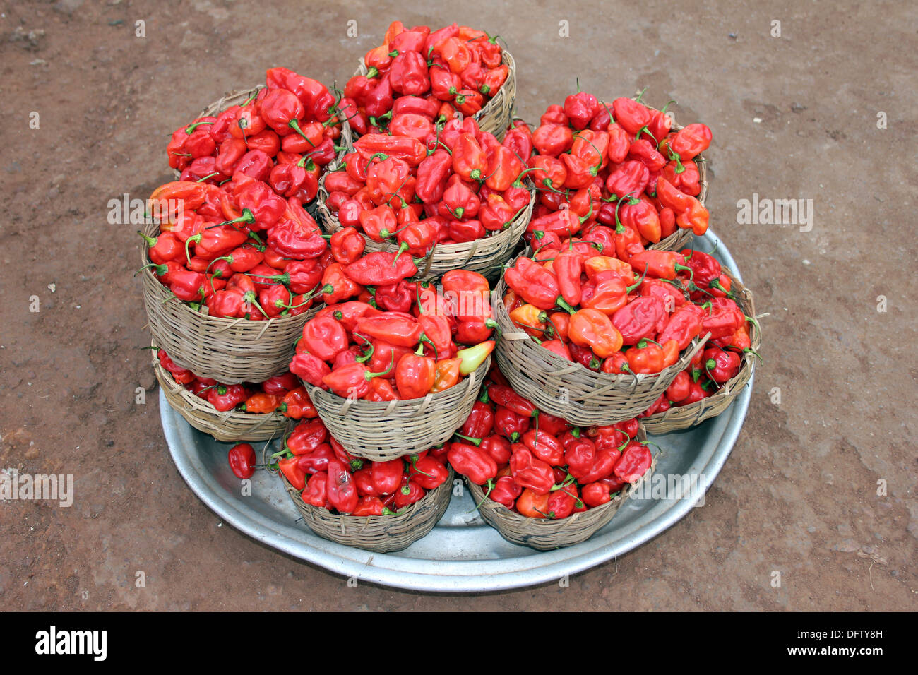 Piles Of Fresh Bell Chili Peppers For Sale at A Ghanaian Market Typically Used For The Local Red-red Peppery Dish - Stock Image