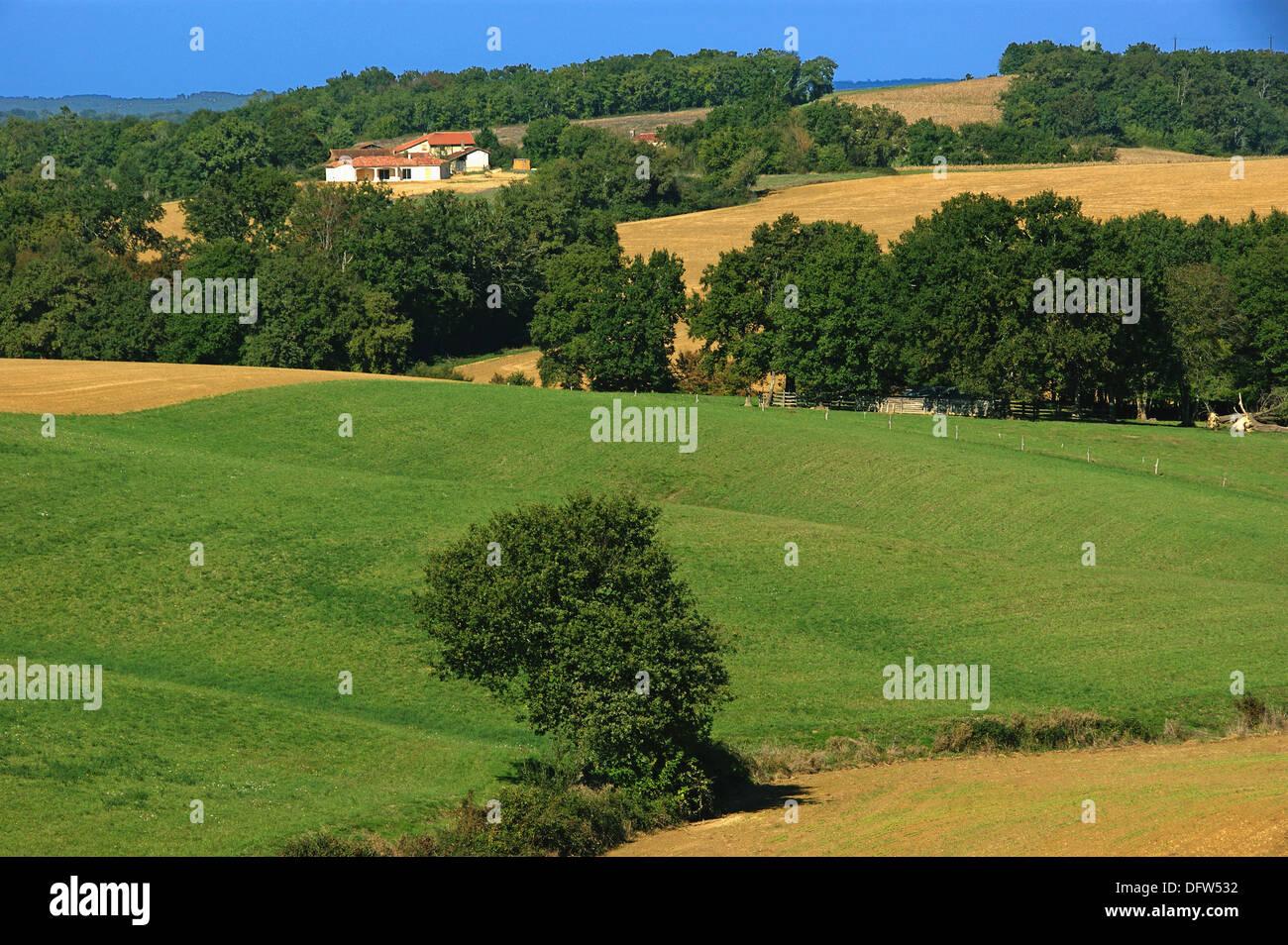 Landscape near Vic-Fezensac, Gers, Midi-Pyrenees, France - Stock Image