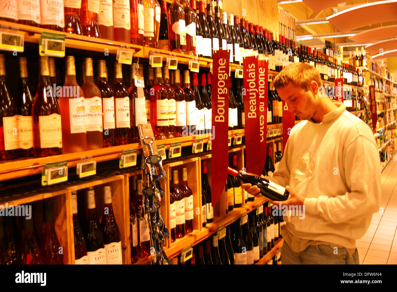 Young man starting to be interested in wines, Gironde, Aquitaine, France - Stock Image