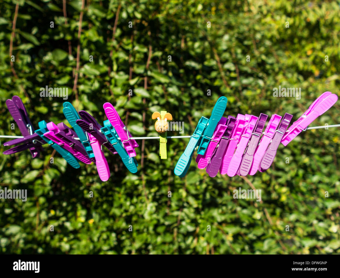 Colorful character plastic pegs on a line standing apart from the central lonely character - Stock Image