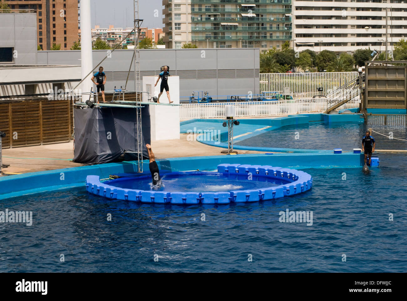 exhibition at the Dolphinarium where acrobats mix risky acrobatics with the Common Bottlenose Dolphins show. - Stock Image
