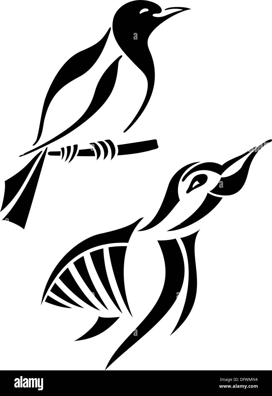 magpie bird symbolism