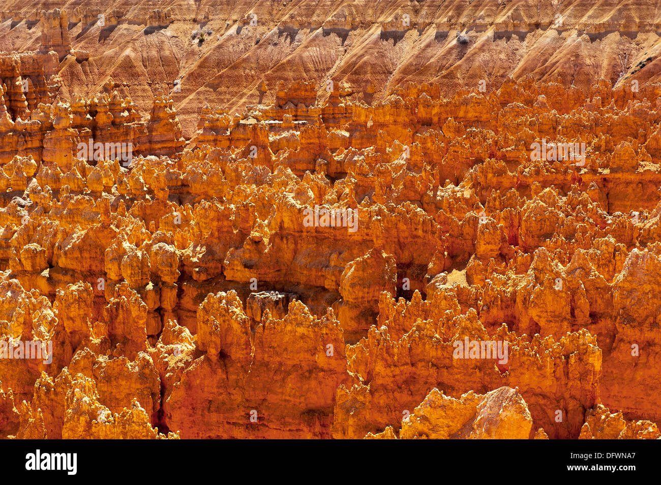 Bryce Canyon National Park Overview - Stock Image