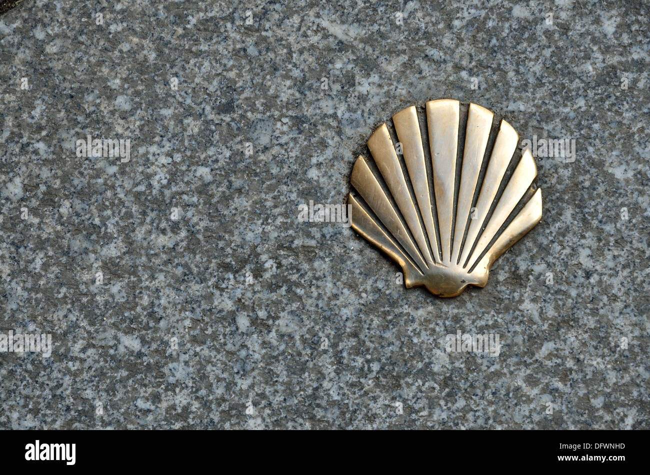 Brass Scallop Shell Symbol Of The Pilgrims On The Way Of St James