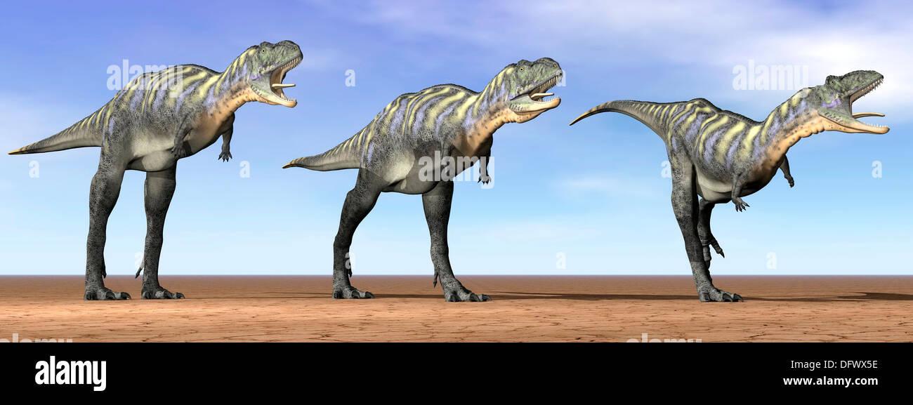 Three Aucasaurus dinosaurs standing in the desert by daylight. - Stock Image