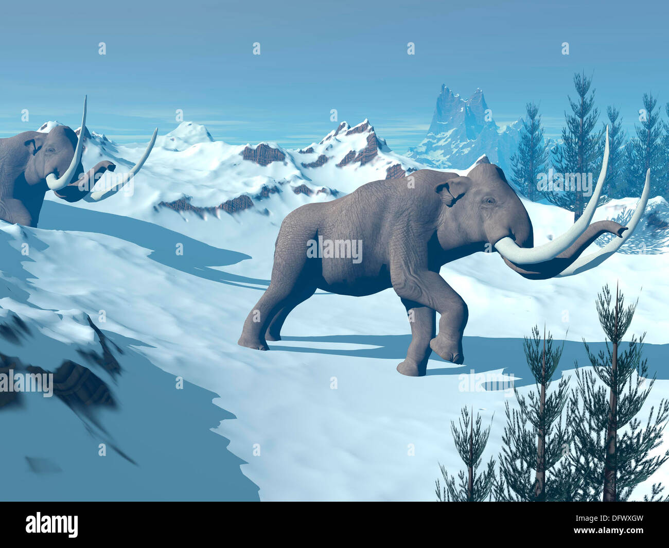 Two large mammoths walking slowly on the snowy mountain. - Stock Image