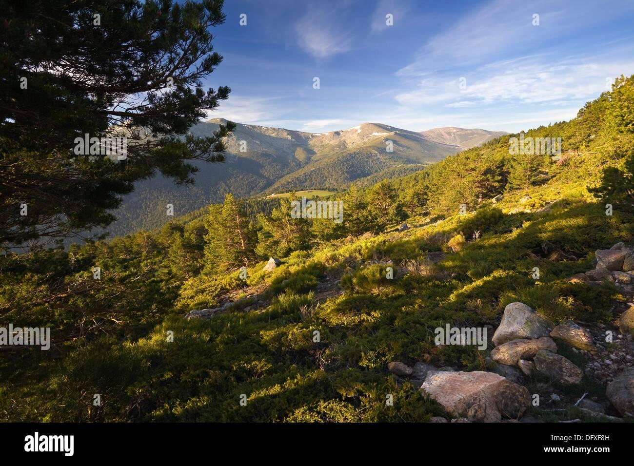 Sierra de Guadarrama Madrid Spain Stock Photo