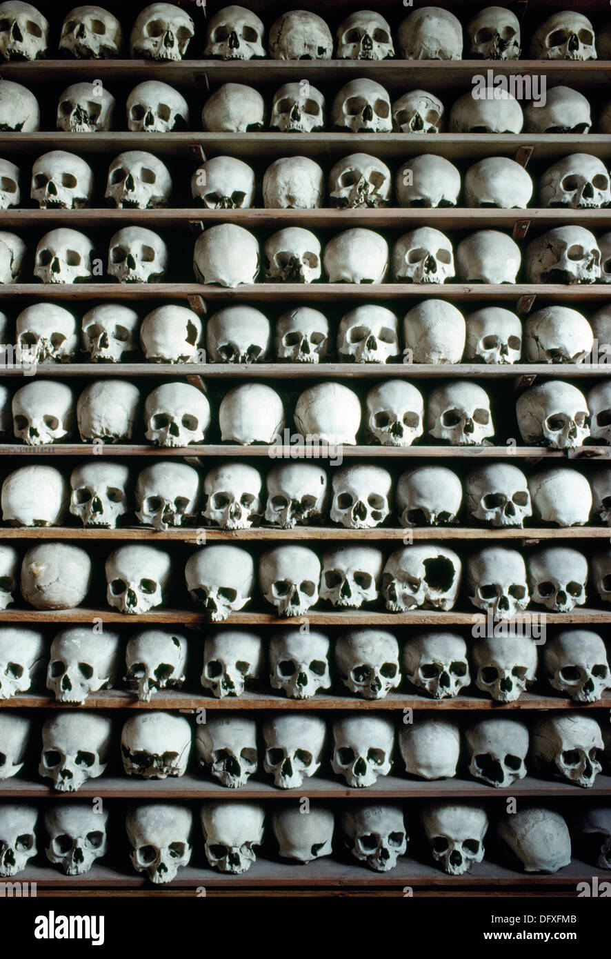Part of a collection of some 2000 human skulls stacked in the crypt of St Leonard's Church, Hythe, Kent, during the period AD1200-1500. - Stock Image