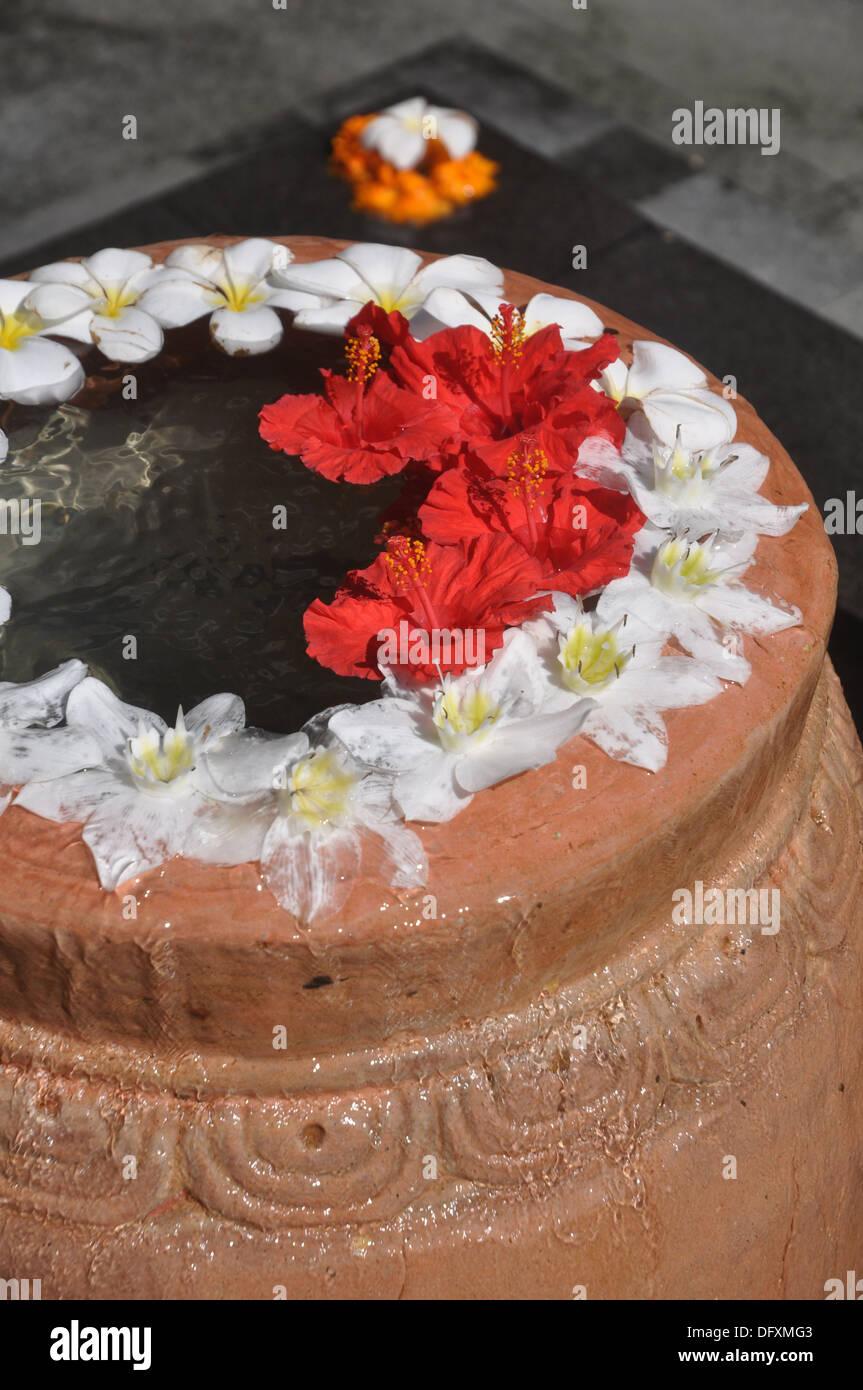 near Ubud (Bali, Indonesia): decorative flowers at the Ubud Hanging Gardens Hotel - Stock Image