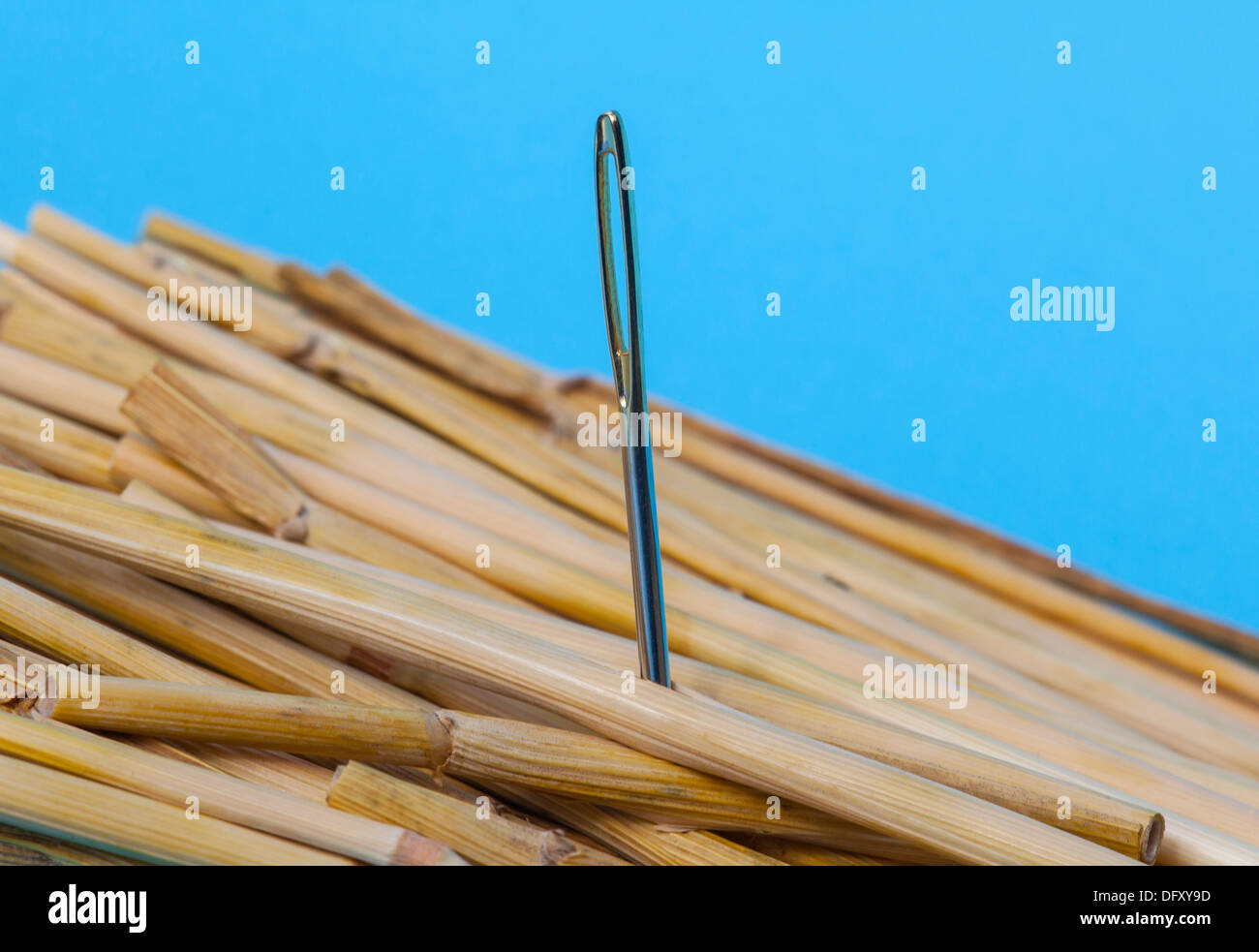 Needle in straw - Stock Image