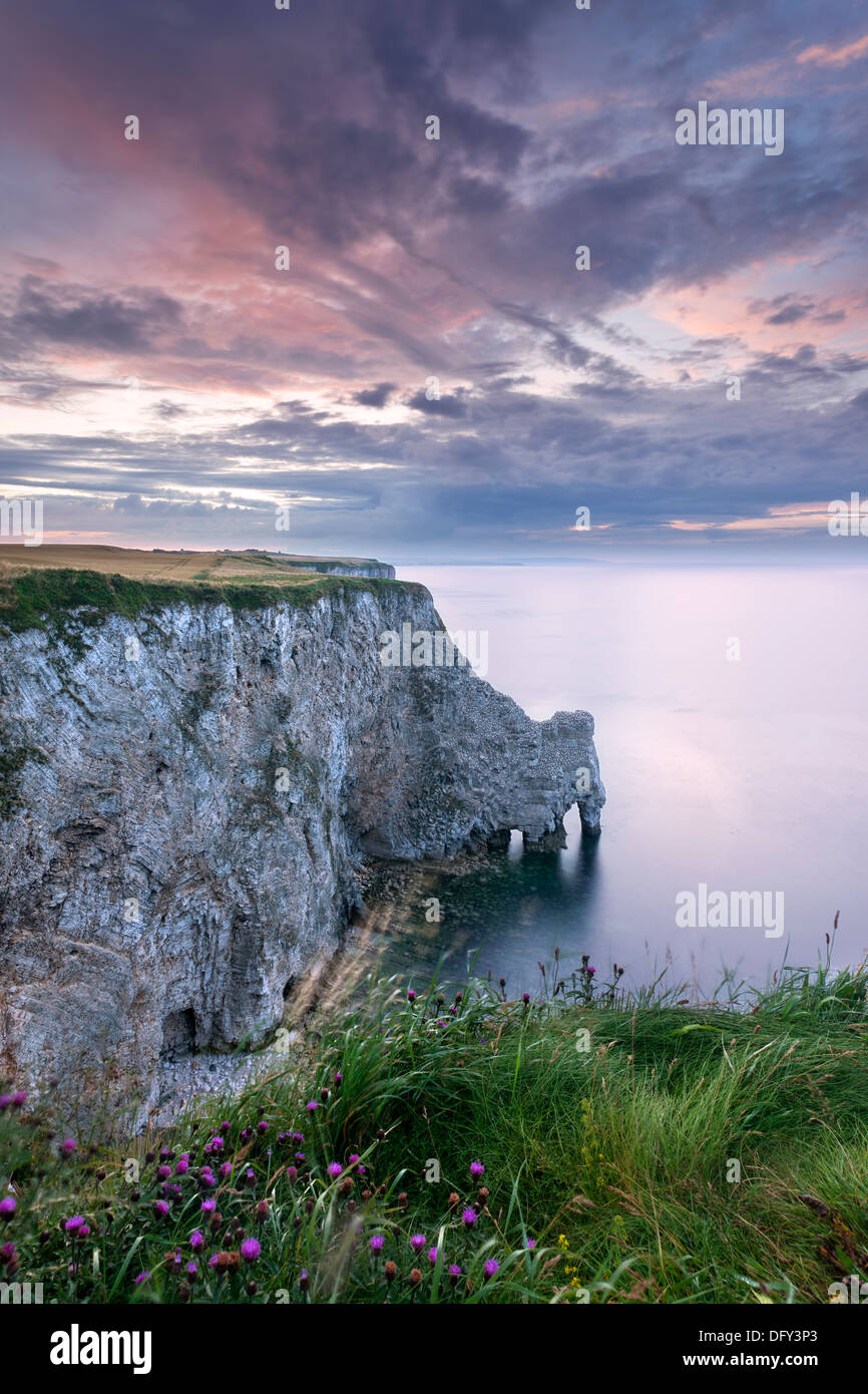 Cliff top view of sea arches at Bempton bird Reserve on the Yorkshire coast. - Stock Image