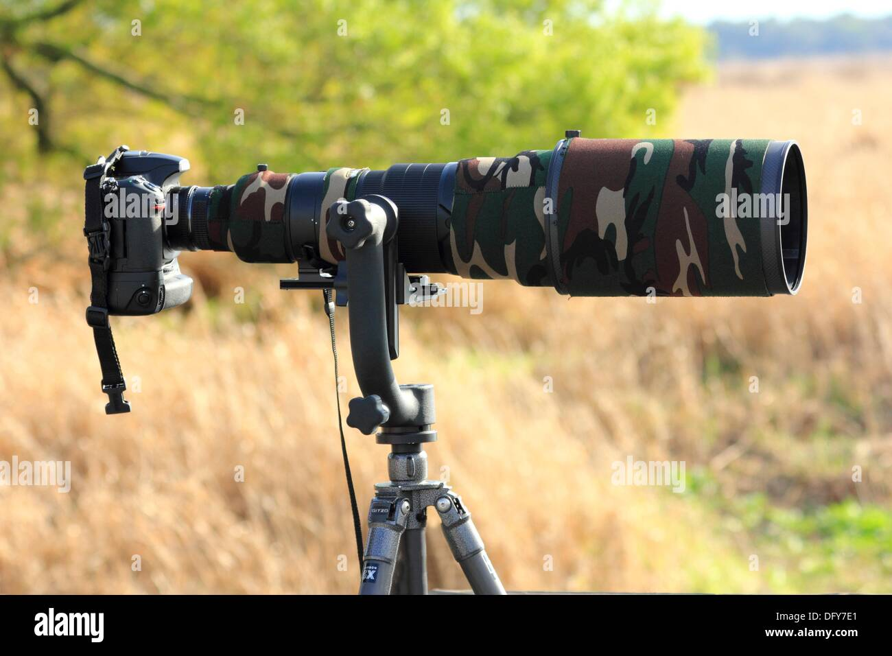 images?q=tbn:ANd9GcQh_l3eQ5xwiPy07kGEXjmjgmBKBRB7H2mRxCGhv1tFWg5c_mWT Awesome Nature Photography Camera @capturingmomentsphotography.net