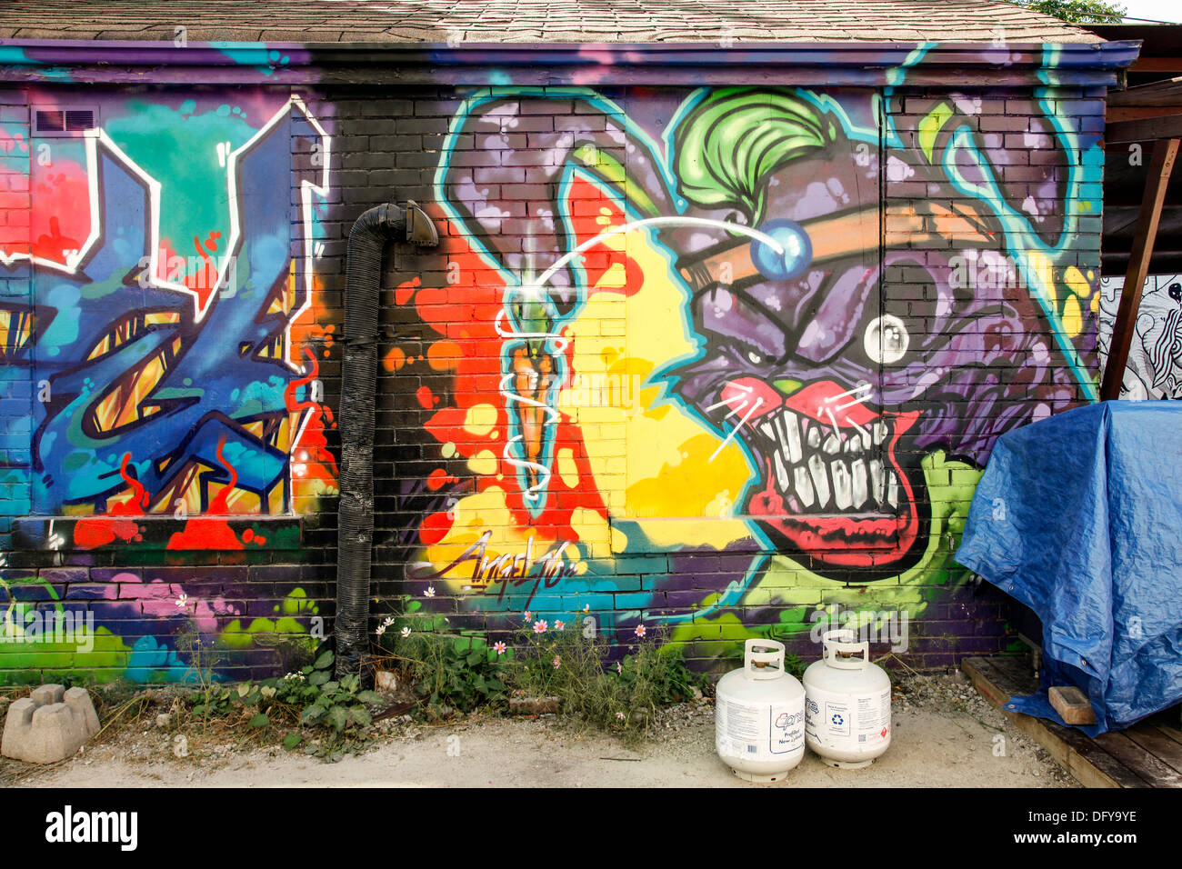 Graffiti and wall art as decoration and art deco on outdoor wall in toronto ontario