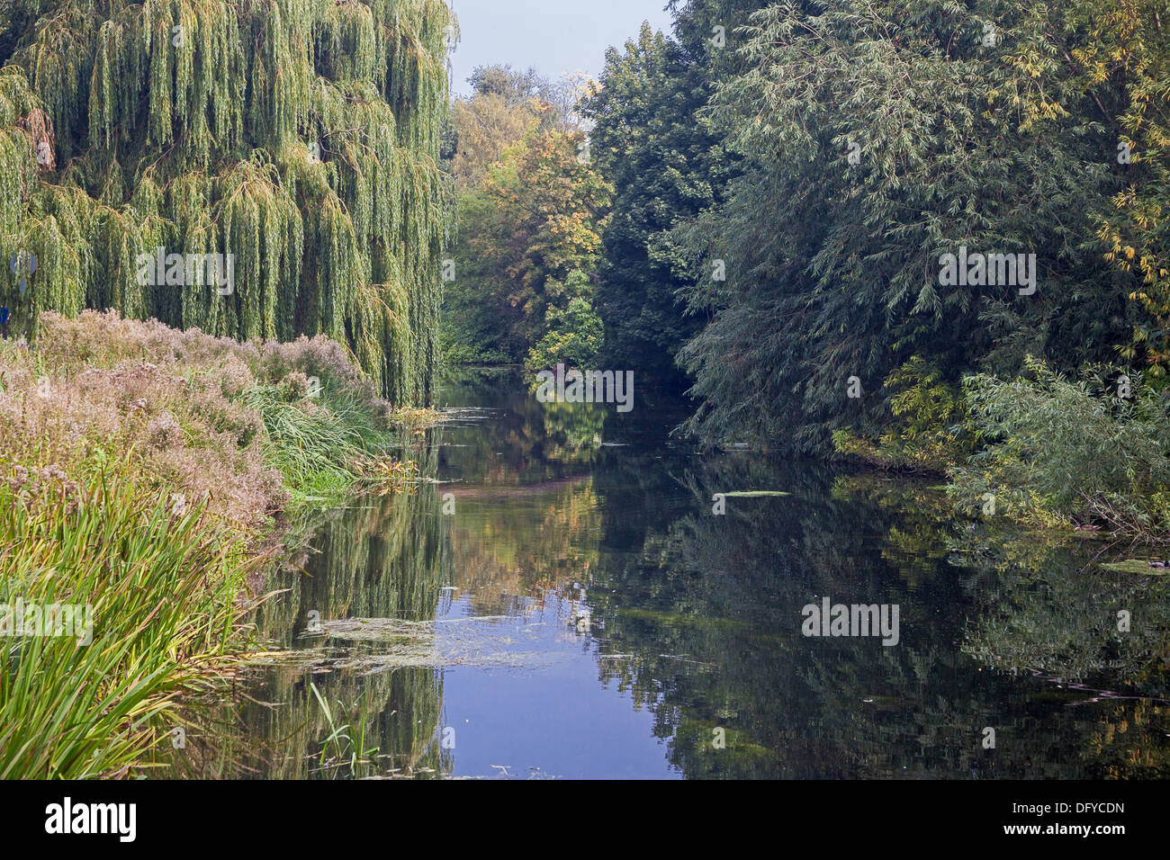 A stretch of the River Chelmer running through Chelmsford city centre Stock Photo