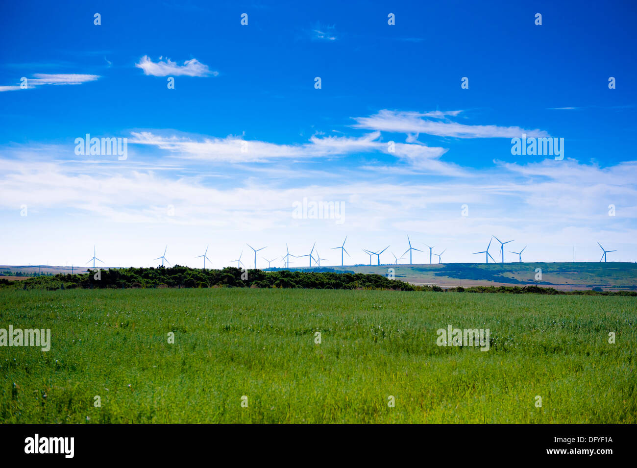 Wind farm beside Dounreay nuclear power station - Stock Image