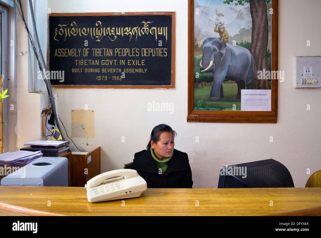 Receptionist of Assembly of Tibetan People´s Deputies, Dharamsala, Himachal Pradesh state, India, Asia - Stock Image