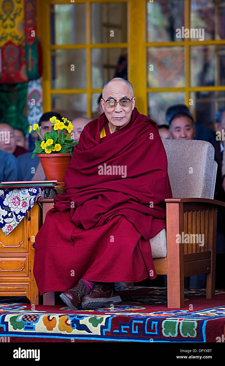 His holiness the Dalai Lama, in Namgyal Monastery,in Tsuglagkhang complex. McLeod Ganj, Dharamsala, Himachal Pradesh state, Indi - Stock Image