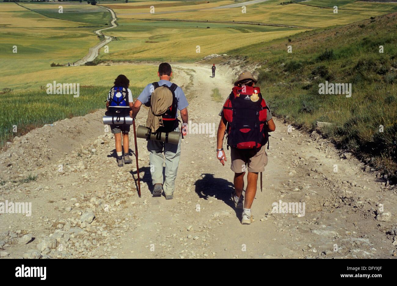 Pilgrims between Rabé de las Calzadas y Hornillos del Camino (Cuesta matamulos). Burgos province. Spain. Camino de Santiago - Stock Image