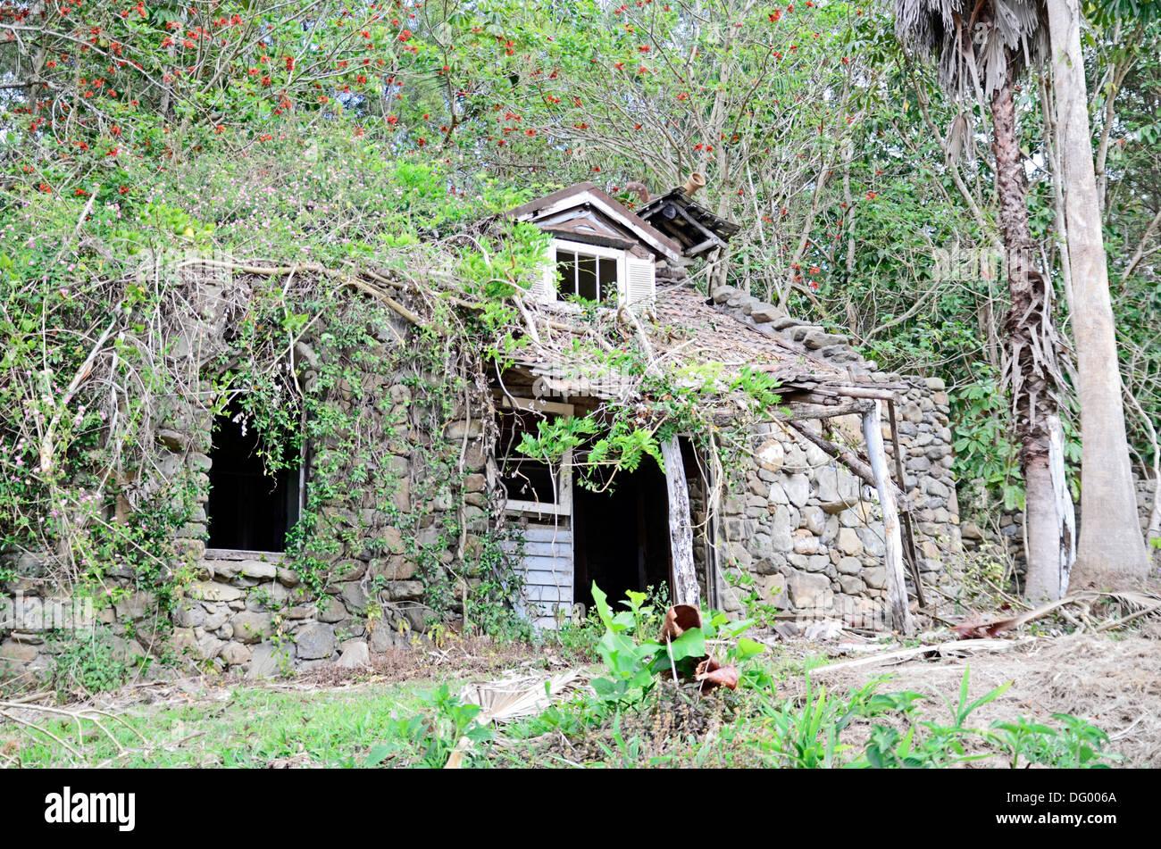 Derelict stone house near Mudgeeraba   QLD Australia. Stock Photo