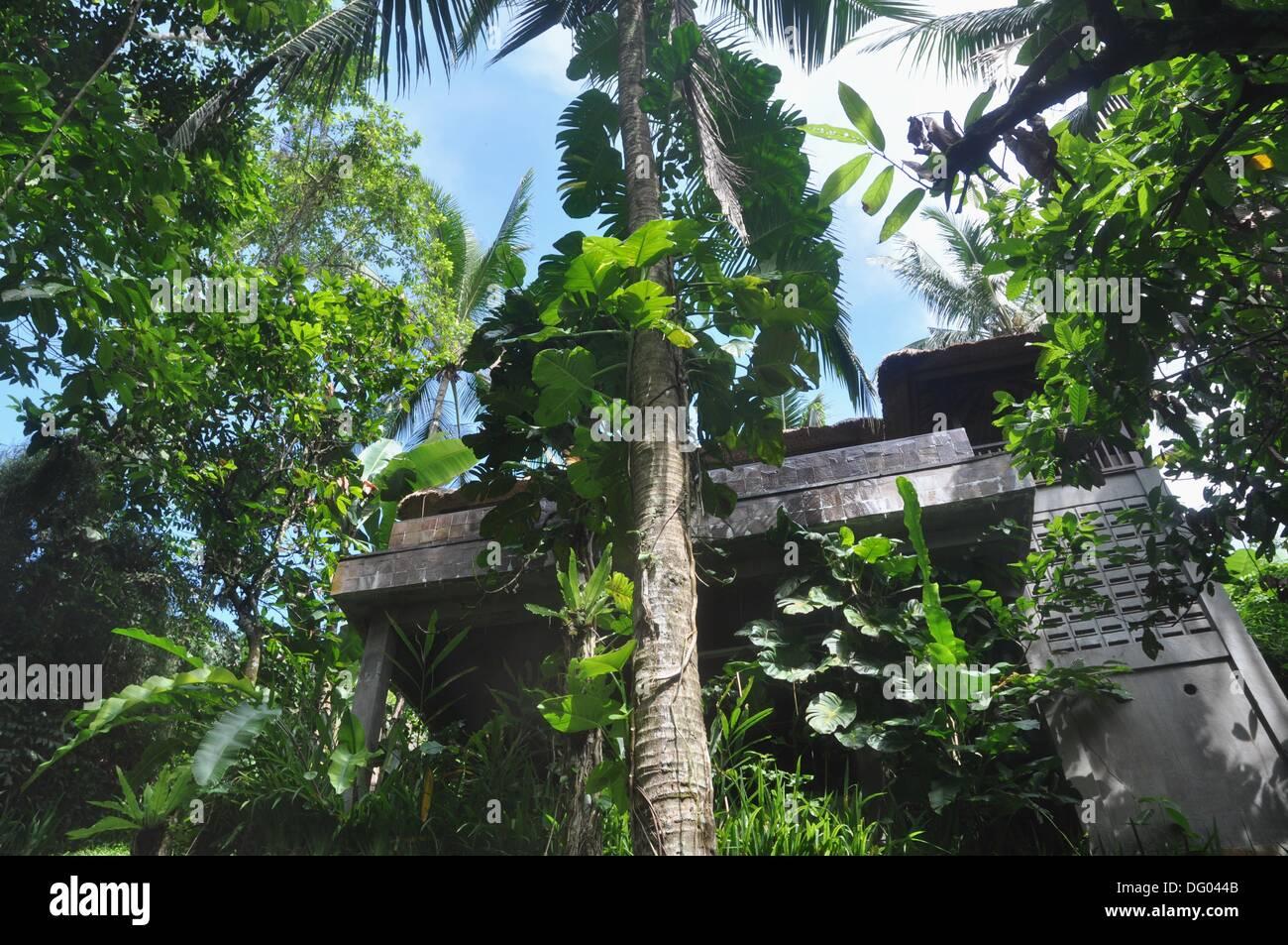near Ubud (Bali, Indonesia): a villa at the Ubud Hanging Gardens Hotel - Stock Image