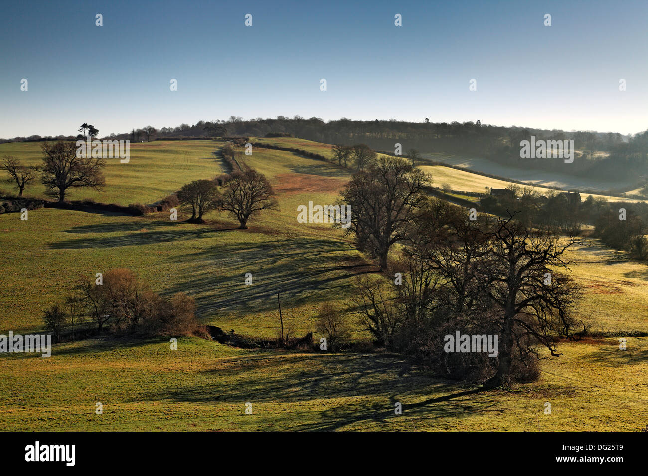 Early morning light on the south downs, near Petworth, West Sussex - Stock Image