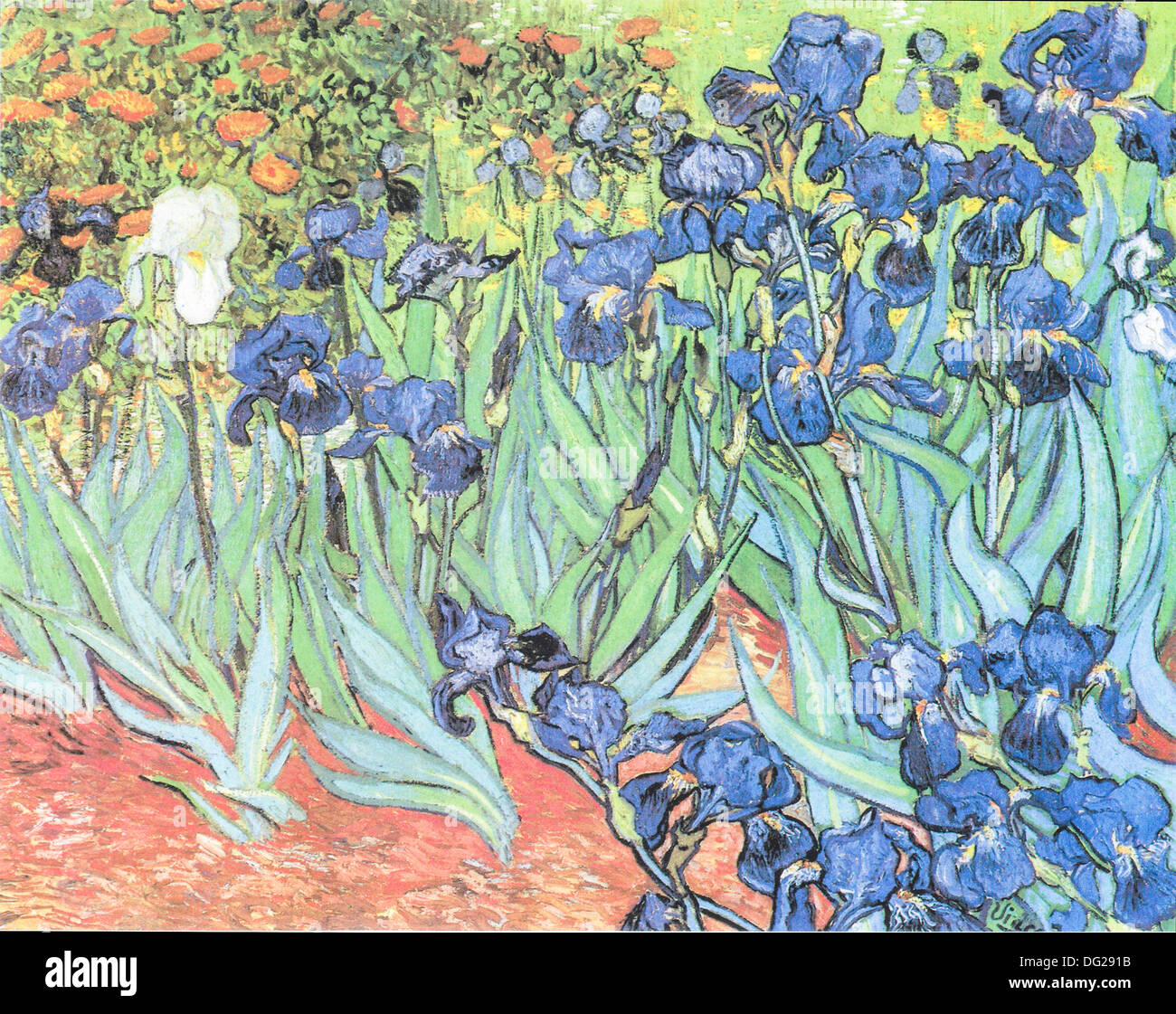 Irises by Vincent van Gogh 1890 Stock Photo