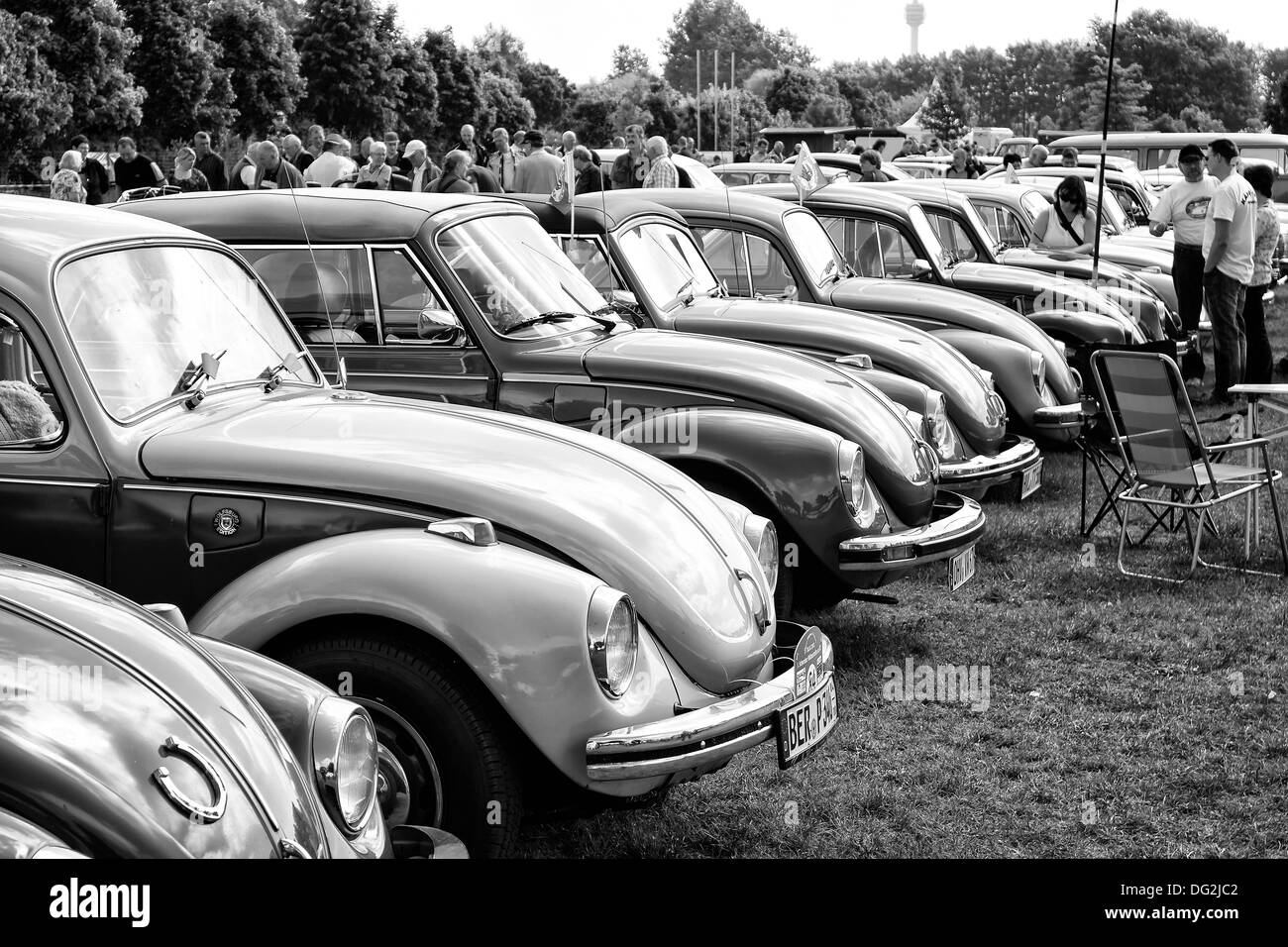 he Several cars Volkswagen Beetle (black and white) - Stock Image