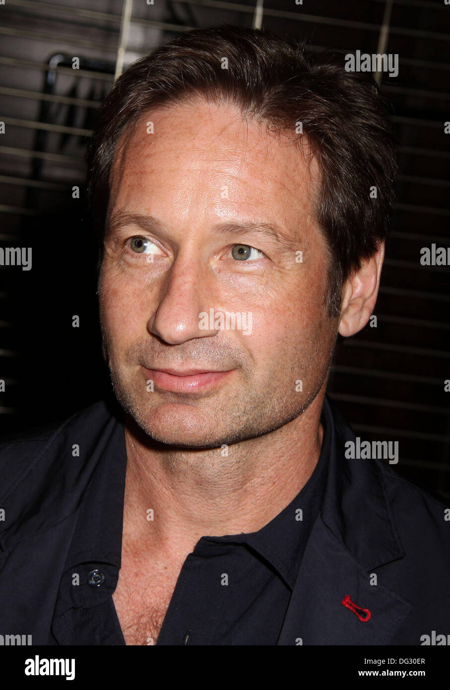 New York, USA. 12th Oct, 2013. Actor DAVID DUCHOVY attends 'The Truth is Here' X Files Panel Discussion held at the Paley Center. © Nancy Kaszerman/ZUMAPRESS.com/Alamy Live News - Stock Image